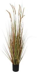 Kunst Pluimgras Dogtail 180cm groen